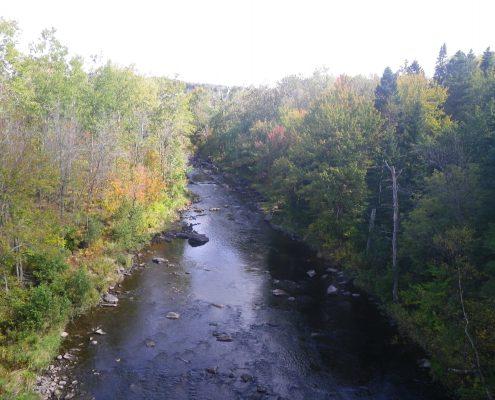 Rivière des Abénaquis, 2010