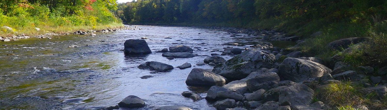rivière etchemin crapaudière