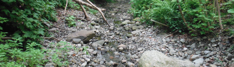 Ruisseau Chapais