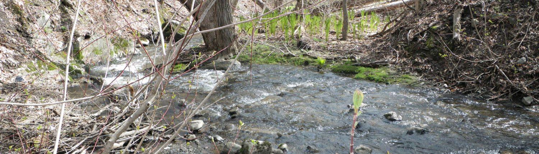 Ruisseau Lallemand