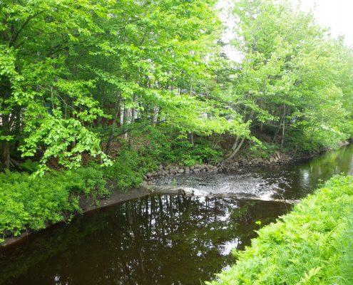 Rivière à la Scie, 2010